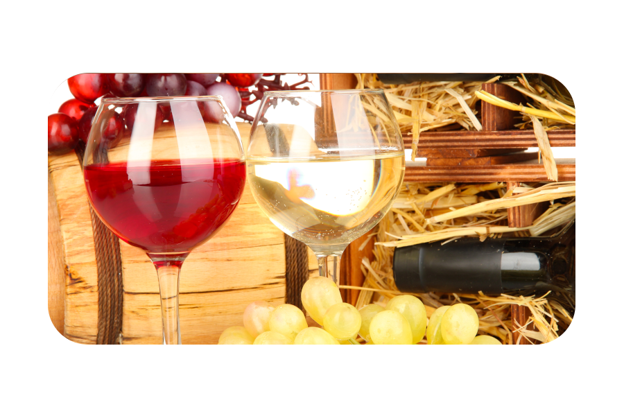 Veinikoolitus Vein ja Vine'ga