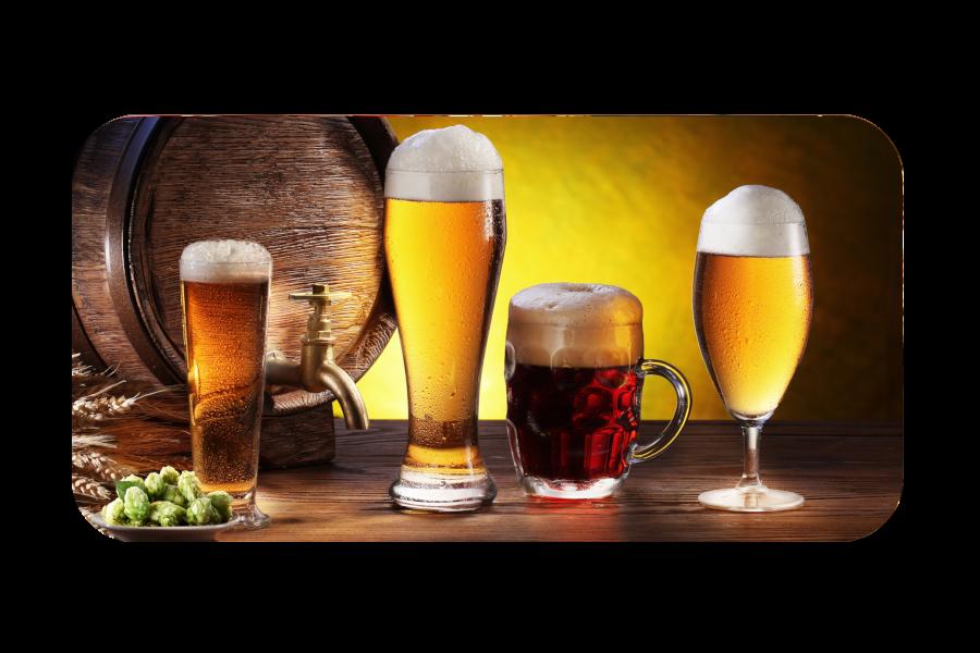 Gambrinuse õllekoolitus